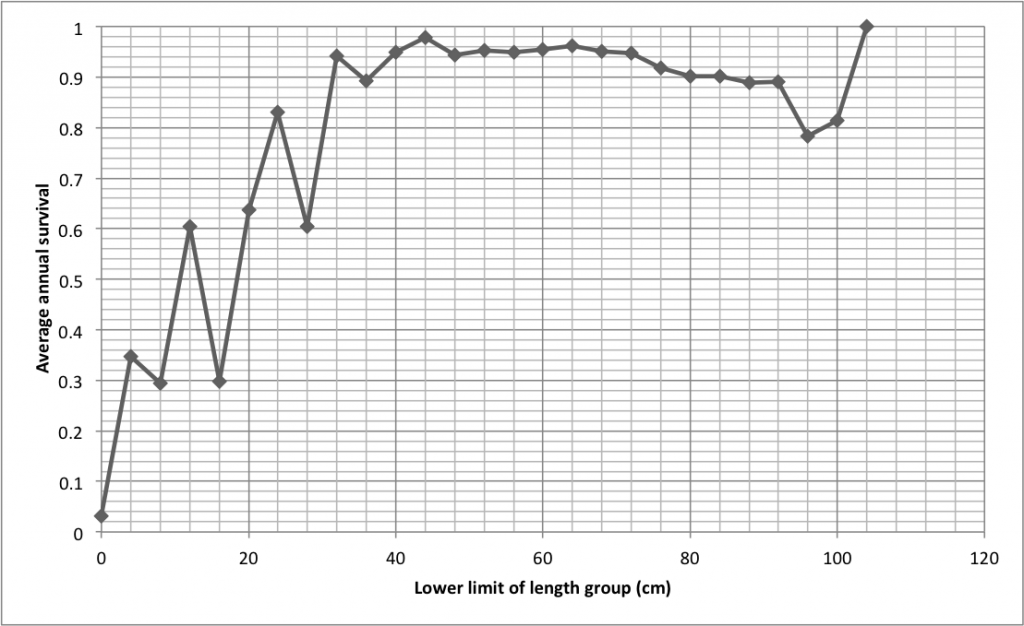 Relationship between length and the clam's chance of stayin' alive. Data from Pearson and Munro (1991)